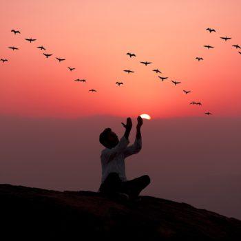 Inspiratie werkboek Acceptatie: innerlijke rust, makkelijker loslaten en meer balans voor een mindful leven!
