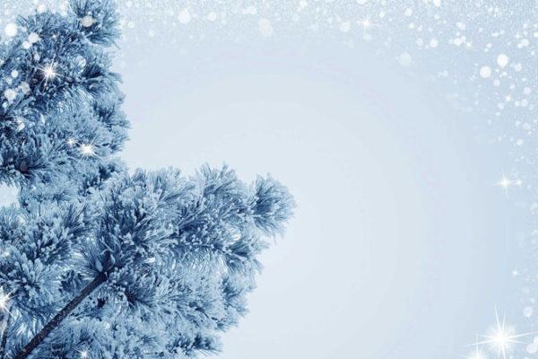 Kies een bijzonder kerstboom en Laat deze stralen met deze kerstboomverlichting!