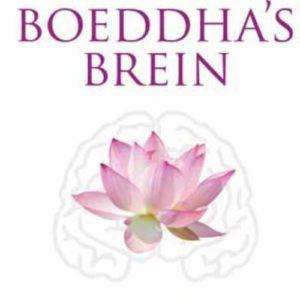 Cadeau tip voor Geluk en Persoonlijke groei met mindfulness, meditatie, wetenschappelijke tips en boeddhistische wijsheden