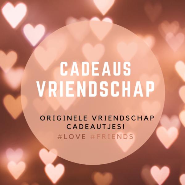 origineel vriendschap cadeau met speciale betekenis en symboliek - bestel een vriendinnen cadeau op inspirerendwinkelen